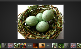 FREE Simple Flash Image Gallery AS2